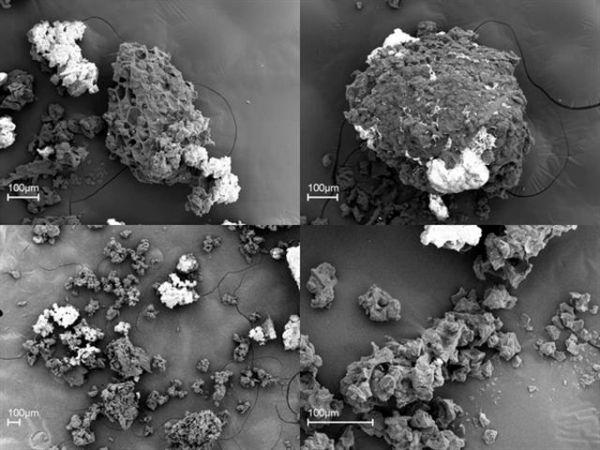 titan grinder project  scanning electron microscope  sem
